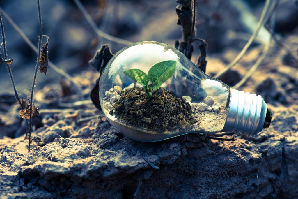 Ayuda a cuidar el medio ambiente con la iluminación LED - Foto nº 1